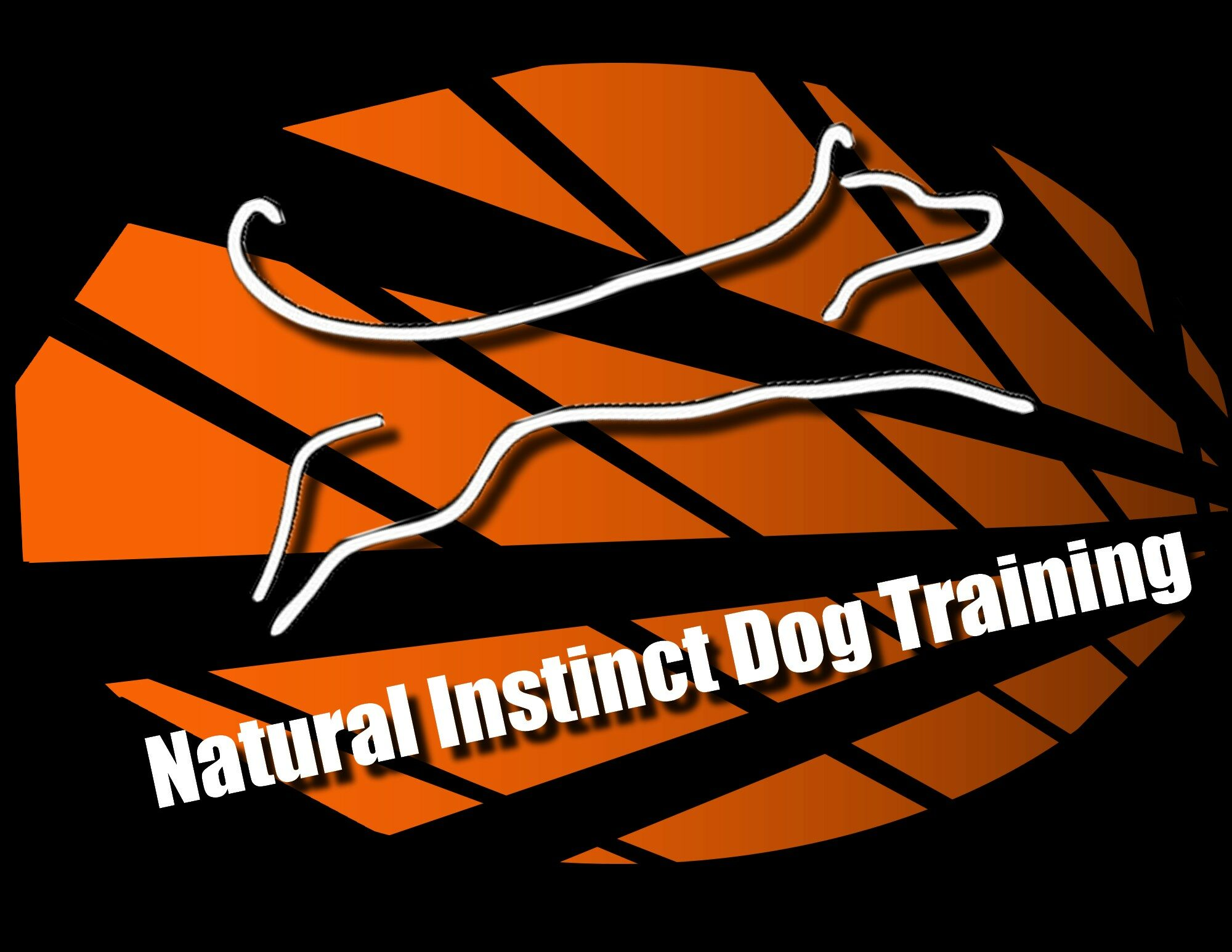 Natural Instinct Dog Training